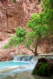 Havasupai Waterfalls Stock Photography