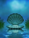 Havbakgrund med snäckskalet och Cattails Royaltyfria Bilder