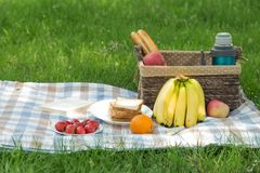 Have A Picnic On The Green Grass Stock Photography