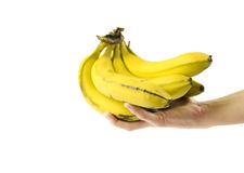 Have a Banana. Hand holding some nutrient rich bananas Stock Photo
