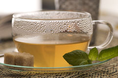 Have a break. A cup of green tea with mint and cane sugar Royalty Free Stock Photo