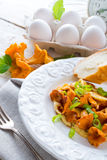 Have breakfast omelette with chanterelles Stock Photo