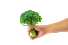 Have Broccoli Stock Photo