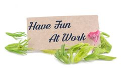 Have fun at work on card. With dried flower isolated on white background stock photography