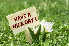 Have a nice day. On wooden sign in garden with white spring flower royalty free stock images