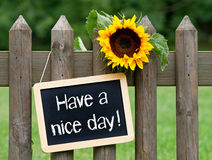Have a nice day sign. On chalkboard hung from garden fence next to sunflower royalty free stock photo