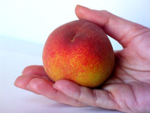 Have a peach. Peach in hand royalty free stock image