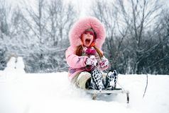 Have a winter fun! Royalty Free Stock Photography
