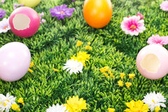 Have you seen the Easter bunny? Stock Images