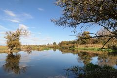 Havel flodlandskap under hösttid vattenreflexion av cl royaltyfri fotografi
