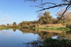 Havel flodlandskap under hösttid vattenreflexion av cl royaltyfri bild