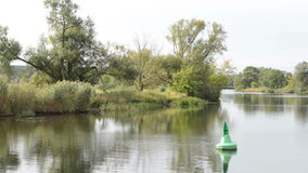 Havel river. boat is driving, passing by typical landscape with meadows and willow tries. Havelland region. Germany.  stock video footage