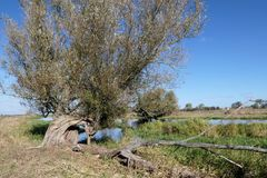 Havel river landscape at Havelland region in Germany stock photography