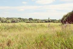 Havel river landscape at summer time (Havelland, Germany). Vinta Royalty Free Stock Image