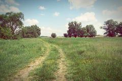 Havel river landscape at summer time (Havelland, Germany). Vinta Stock Images