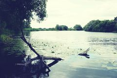 Havel river landscape at summer time (Havelland, Germany) Stock Photos