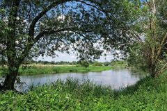 Havel river in summer flowing through Havelland (Brandenburg, Ge Royalty Free Stock Image