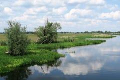 Havel river in summer flowing through Havelland (Brandenburg, Ge Royalty Free Stock Photos