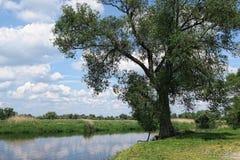 Havel river in summer flowing through Havelland (Brandenburg, Ge Royalty Free Stock Photo