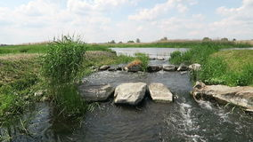 Havel river in summer. historical needle weir. Havelland (Brandenburg, Germany). fish stock video footage