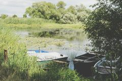 Havel river at summer time Stock Images