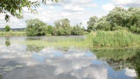 Havel rzeki krajobraz wzdłuż Havelradweg (Brandenburg Niemcy) (Havel roweru ścieżka) zdjęcie wideo