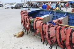 Haven dichtbij La Serena Chile Royalty-vrije Stock Foto's