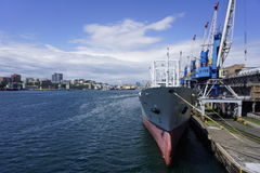 Haven van Vladivostok Primorye Rusland Royalty-vrije Stock Foto