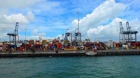 Havens van Auckland Nieuw Zeeland stock videobeelden