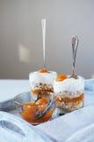 Haver gelaagd met kruidige abrikozenjam Gezond voedselconcept stock fotografie