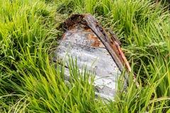 Haverier på sjösidan av Connemara Arkivbilder