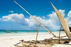 Haverier på stranden Royaltyfri Foto