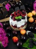 Havermeel met yoghurt en bessen in een kruik royalty-vrije stock afbeelding