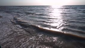 Havet av grå färger, i sommaren, i blåsväder, styrkavågor, skum bildas på kusten och bränning Sol- bana lager videofilmer