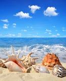 Havet beskjuter i Sand royaltyfria bilder