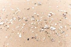 Havet beskjuter på stranden Arkivbild