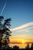 Havet eller stranden med sörjer trädet i solnedgång Royaltyfria Foton