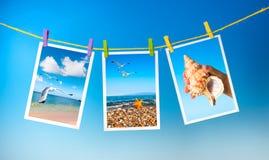 Havet föreställer att hänga på färgrika pinnor på blå bakgrund, collag Arkivbilder