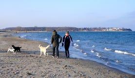 havet går Barnet kopplar ihop med en hund på en solig vinterdag Royaltyfria Bilder