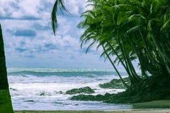 Havet i Ghana arkivfoton