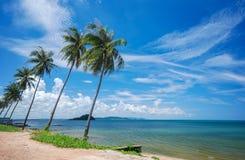 Havet och kokosnöten gömma i handflatan Arkivbilder