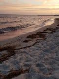 Havet och seglar utmed kusten Arkivfoto