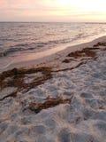 Havet och seglar utmed kusten Fotografering för Bildbyråer