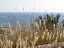 Havet ovanför Rosh Hanikra Israel Fotografering för Bildbyråer