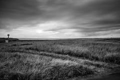 Havet på The Edge av horisonten är som en däckmönster till den mörka himlen över och gräsfältet under under en stormig dag i lång royaltyfri bild