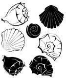 havet shells silhouetten Arkivfoto