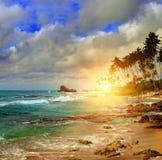 Havet, soluppgång och tropiskt gömma i handflatan royaltyfri foto