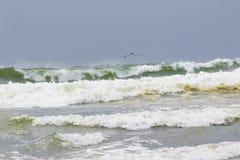 Havet stöttar vågor Fotografering för Bildbyråer