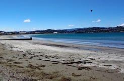 Havet sveper försiktigt på den sandiga stranden på den Lyall fjärden nära gummistövel i Nya Zeeland royaltyfria bilder