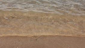 Havet vinkar över sandstranden stock video